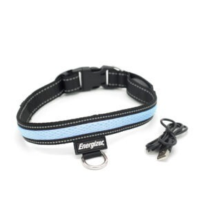 Energizer LED Dog Collar – Blaze Blue