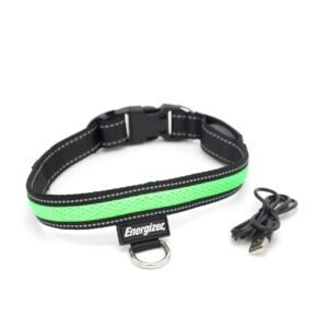 Energizer LED Dog Collar – Blaze Green