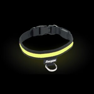 Energizer Ignite LED Collar, Yellow